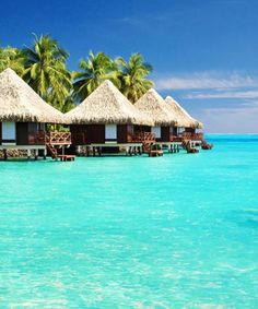 Tahiti Honeymoons - Plan the perfect Tahiti honeymoon and find Oceania honeymoon destinations. Find information about planning your honeymoon in Tahiti. Romantic Honeymoon Destinations, Vacation Destinations, Dream Vacations, Romantic Getaways, Maldives Honeymoon, Visit Maldives, Dream Vacation Spots, Honeymoon Spots, Romantic Destinations