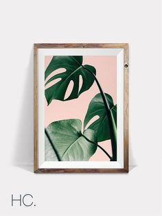 Palm Leaf Print Pink And Green Tropical Exotic Nature Decor Plant Wall Interior Art This Gorgeous