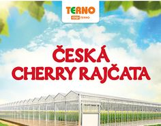 "Check out new work on my @Behance portfolio: ""Flyer - Terno - České Budějovice (Cherry Tomato)"" http://be.net/gallery/53703479/Flyer-Terno-Cesk-Budejovice-(Cherry-Tomato)"