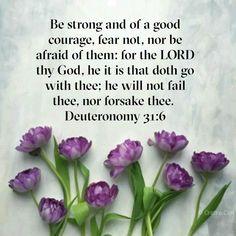 Deuteronomy 31 6, Jesus Saves, Prayer Request, Bible Scriptures, Jesus Christ, Amen, Prayers, Sisters, Lord