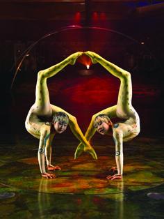 Cirque de Soleil  I appreciate the amazing acrobatics of this group. Truly phenomenal.