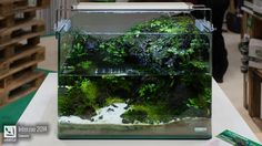 Favourites: Dennerle tank at Interzoo 2014 This and more pictures here. Photo credit by peHa:68