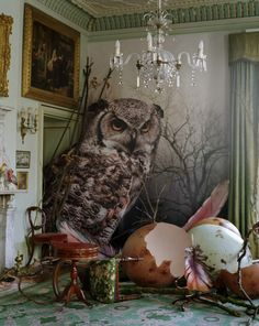bienenkiste:    Eagle owl and hatched eggs by Tim Walker  Shotover Park, Oxfordshire, 2010