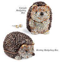 Hedgehog Collectible Box