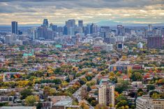 High quality images of cities. Moving To Canada, Montreal Canada, High Quality Images, San Francisco Skyline, Cityscapes, Urban Design, Architecture, Cities, Buildings