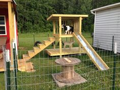 Goat play yard