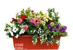 Sul davanzale una cassetta fiorita tutta l'estate - Cose di Casa