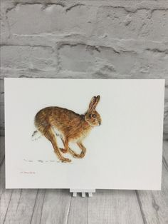 Hare! A fine art #print of a Norfolk brown hare by artist Teresa Staniforth. Perfect for #easter and #mothersday