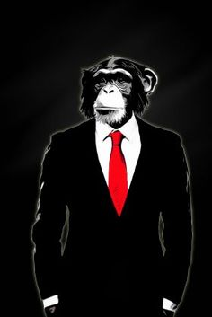 Cortesi Home is proud to present 'Domesticated Monkey' by Nicklas Gustafsson. Digital artwork featuring a monkey in a corporate business suit. Nicklas Gustafsson is a graphic designer and a photograph Monkey Art, Pet Monkey, Canvas Wall Art, Canvas Prints, Art Prints, Monkey Illustration, Monkey Wallpaper, Animal Posters, Chimpanzee