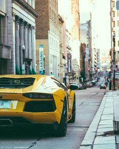Lamborghini Aventador #petrolified