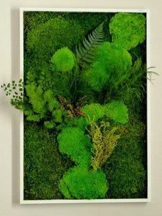 Bee Green jardins verticaux Bordeaux                                                                                                                                                                                 Plus