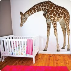 This beautiful real-life giraffe will keep watch over your baby. A beautiful feature for a nursery or child's room. Australian made and landlord friendly.
