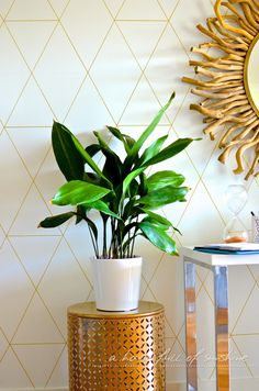 """How to make DIY """"wallpaper"""" with a gold paint pen 