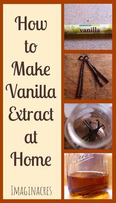 How to Make Vanilla Extract - ImaginAcres