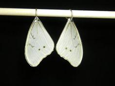 White Morpho Earrings and Handmade by BioArteNatureJewelry on Etsy, $28.00