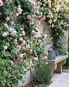 Roses outside the café—the casual counterpoint to gastronomic La Table de Levernois—welcome patrons to the mansion's eighteenth-century kitchen.
