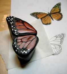butterfly wing canes