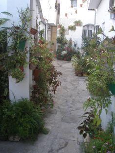 Calle Virgen