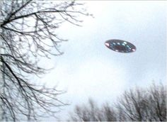 One of the best ufo pictures ever! Aliens And Ufos, Ancient Aliens, Denver, Cosmos, Unidentified Flying Object, Alien Spaceship, Alien Abduction, Grunge, Flying Saucer
