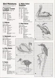 Gallery.ru / Фото #15 - 3 - tymannost Australian Birds, Cross Stitch Bird, White Tail, Back Stitch, Bullet Journal, Gallery, Birds, Dots, Embroidery