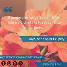 Il tempo che hai perso per la tua rosa è ciò che fa la tua rosa tanto importante. Antoine de Saint-Exupéry #Aforismi
