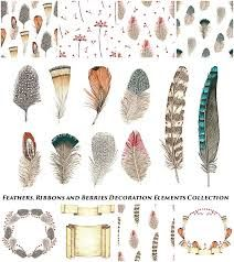 Image result for feather frame vector