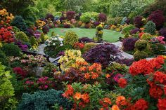 Colours of the rainbow in the upper garden. by Four Seasons Garden, via Flickr