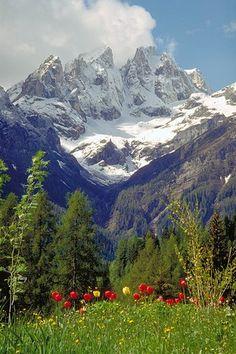 Provincia di Belluno - Focobon #TuscanyAgriturismoGiratola
