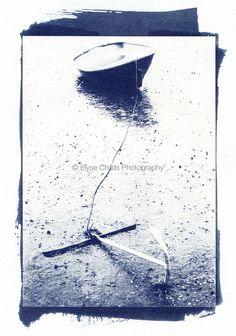 Cyanotype | © Elyse Childs Photography