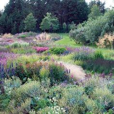 """Piet Oudolf's New Garden Book, """"Plantings"""" : Architectural Digest #GardenArchitecture"""