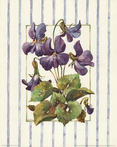 Google Image Result for http://cache2.allpostersimages.com/p/LRG/16/1644/N44GD00Z/posters/van-dijk-jerianne-striped-botanical-violet.jpg