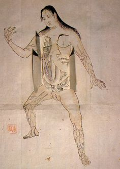 Edo-period medical illustration -- These anatomical illustrations are based on those found in Pinax Microcosmographicus, a book by German anatomist Johann Remmelin (1583-1632) that entered Japan via the Dutch trading post at Nagasaki.