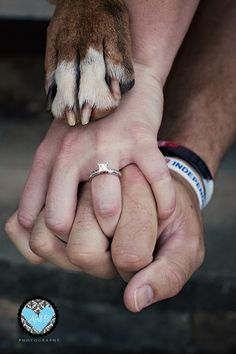 Couple Pet(s) Save The Date Picture (with our pictures) - love this idea and probably gonna do it with our cat's paws :)