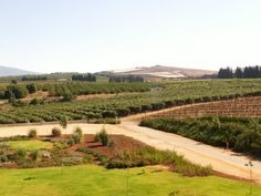Salha is situated nearby to Yir'on. Vineyard, Mountain, Places, Outdoor, Outdoors, Outdoor Games, The Great Outdoors, Lugares