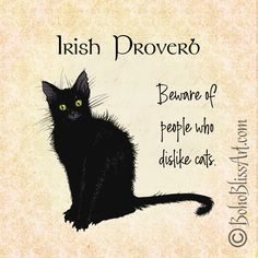 gifts for cats Whimsical Black Cat Irish Proverb Art PrintThis is an unframed art print. The Boho Bliss Art logo is removed on your purchase. This listing is for your choice of a x 1 I Love Cats, Cute Cats, Funny Cats, Adorable Kittens, Crazy Cat Lady, Crazy Cats, Black Cat Art, Black Cats, Cat Art Print