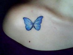 Morphos butterfly tattoo... Keep coming back to this, only thing I've ever thought I like enough to have forever...still not 100% sure