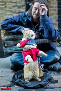 James is a street musician struggling to make ends meet. Bob is a stray cat looking for somewhere warm to sleep.