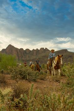 Saddle up and explore Tucson's striking desert beauty on a leisurely trail ride.