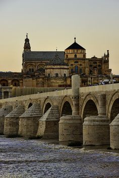 The Roman Bridge - Cordoba, Spain