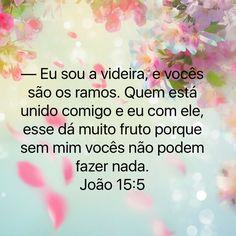 João 15:15
