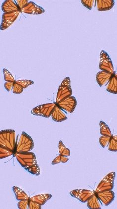 Retro Wallpaper Discover butterfly wallpaper discovered by me on We Heart It butterfly wallpaper discovered by me on We Heart It Wallpaper Pastel, Butterfly Wallpaper Iphone, Cute Patterns Wallpaper, Iphone Wallpaper Vsco, Trippy Wallpaper, Homescreen Wallpaper, Aesthetic Pastel Wallpaper, Iphone Background Wallpaper, Aesthetic Backgrounds