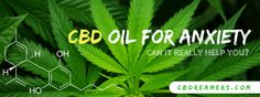 Does CBD Oil Relieve Your Anxiety And Depression? - CBDreamers