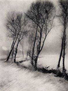 View Paysage enneigé by Léonard Misonne on artnet. Browse upcoming and past auction lots by Léonard Misonne. Contemporary Photography, Landscape Photography, Art Photography, Indoor Photography, Photo D Art, Tree Forest, Monochrom, Tree Art, Photos