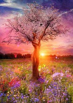 #Wow #amazing #tree #flowers #inspiring #pink #gorgeous #beautiful #sunset #woman,  tree of life