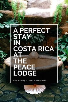 Sometimes you find a really special resort. One that exceeds your expectations and makes you wish you didn't have to go home. The Peace Lodge is that place.