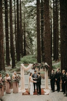 This woodland wedding took place in one of the incredible gardens of the UC Botanical Garden | Image by From the Daisies