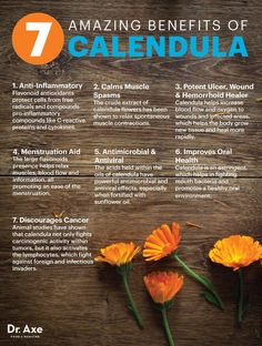 Calendula benefits - Dr. Axe http://www.draxe.com #health #Holistic #natural