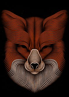 Fox on Behance