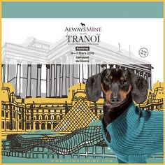 AlwaysMine at Tranoï #AlwaysMineMilano #fashion #cashmere #fashionista #tranoi #stylish  #glam #madeinitaly #milano #vogue #elle #luxury #tranoishow #dog #parisfashionweek #fashiontradeshow #tranoifashion #tradeshow #autumnwinter1617 #paris #carrouseldulouvre #tranoifemme #tranoifemmeaw1617