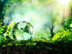 World Environment Day, Environment Concept, Green Environment, Save Environment, When I Dream, Social Change, Energy Technology, Technology News, Technology Integration